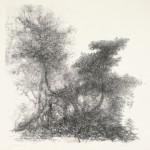 Bossage, 1986 litho, 50.2 x 69.9 cm