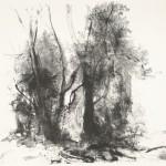 Zonder titel, 1976 litho, 49.7 x 25.7 cm