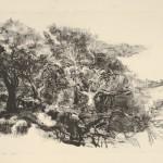 Zonder titel, zonder jaar litho, 49.3 x 69.5 cm