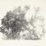 Zonder titel, 1981 litho, 50.1 x 69.0 cm