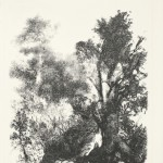 Zonder titel, 1983 litho, 70.0 x 50.9 cm